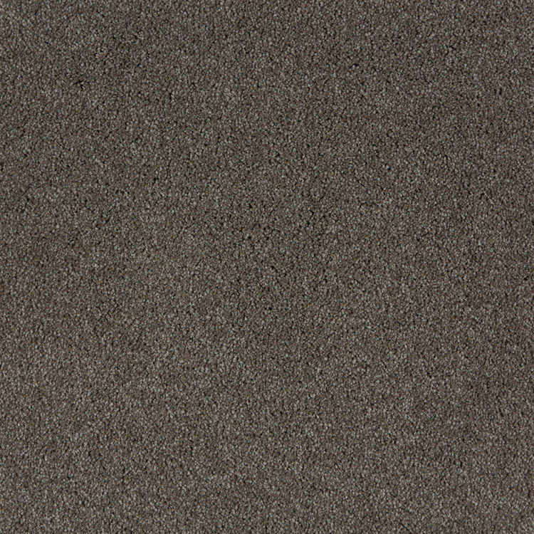 Picture of PATINA - MANTRA (FITTED CARPET)